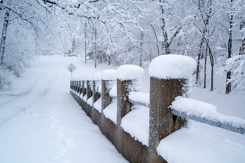 雪の日には家でぬくぬくezcast