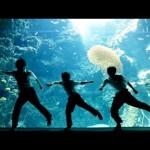 福島ダンス動画